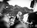 ambiance - Nico M Photographe (45)