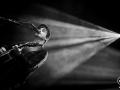 Gauvain Sers - Nico M Photographe-2