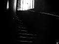 lyon, Nico M Photographe-8