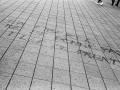 manif 28.04, rennes, Nico M Photographe-42