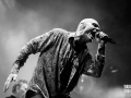 midnight oil, Vieilles Charrues 2017, Nico M Photographe-7
