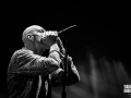 midnight oil, Vieilles Charrues 2017, Nico M Photographe