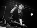 peter doherty, pont du rock 2017, Nico M Photographe-10