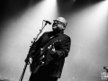 the pixies, argentique, Vieilles Charrues, Nico M Photographe-8