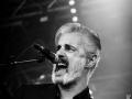 Tiggerfinger,vendredi, Au Pont du Rock 2014, Nico M Photographe-8