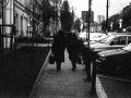 pologne, Nico M Photographe-82