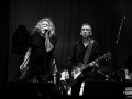 Robert Plant & the sensational Space Shifters - Nico M Photographe