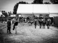 public, samedi, Roi Arthur, Nico M Photographe-5