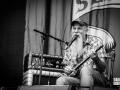 seasick steve, Vieilles Charrues 2017, Nico M Photographe-2