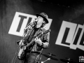 the libertines, argentique, Vieilles Charrues, Nico M Photographe-8