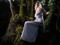broceliande 4 - Nico M Photographe