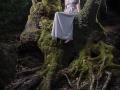 broceliande 5 - Nico M Photographe