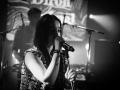 diron animal - Nico M Photographe-4