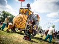 parade elephantesque - Nico M Photographe-6