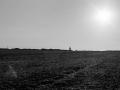 ile de groix 135, Nico M Photographe-7
