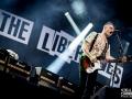 the libertines,Vieilles Charrues, samedi, Nico M Photographe-6