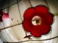 exterieur, Nico M Photographe-4
