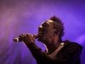 FFF,vendredi, Au Pont du Rock 2014, Nico M Photographe-9