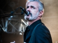 Tiggerfinger,vendredi, Au Pont du Rock 2014, Nico M Photographe-5