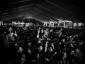 ambiance,vendredi, Rockn Solex 2015, Nico M Photographe-7.jpg