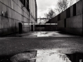 sortie nantes, Nico M Photographe-11