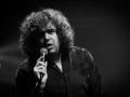 the daniel wakeford experience - Nico M Photographe-2
