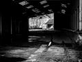 urbex2-nico-m-photographe-17